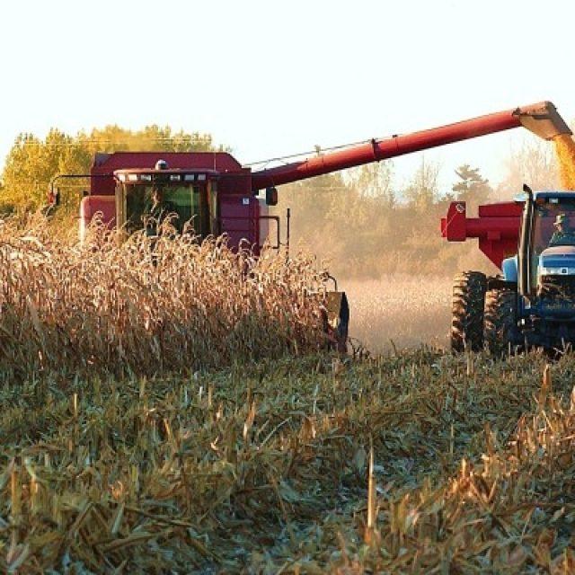 Monotributo Social: el Área de Producción del Municipio convoca a productores agrícolas de la región