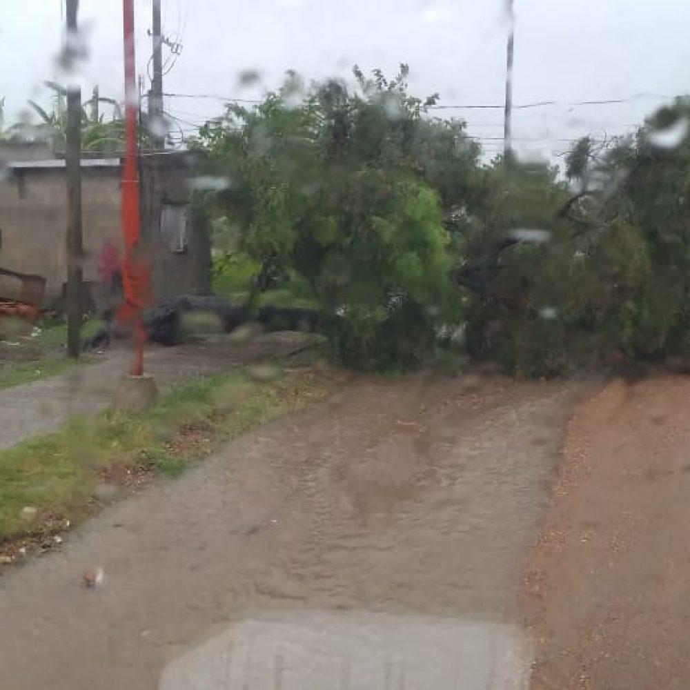 Chajarí: el Municipio brinda asistencia y recomendaciones ante el fuerte temporal